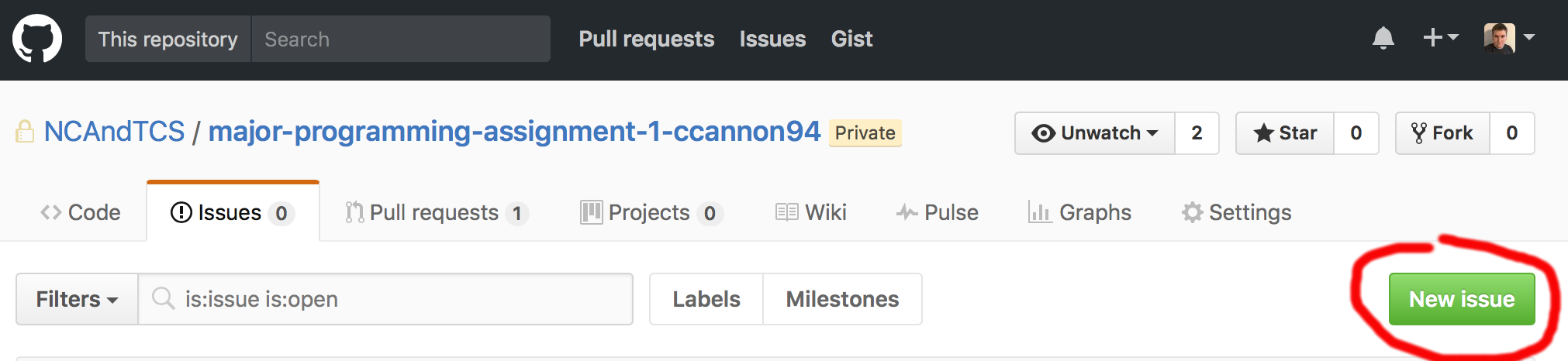 "GitHub screenshot of ""New Issue"" button"