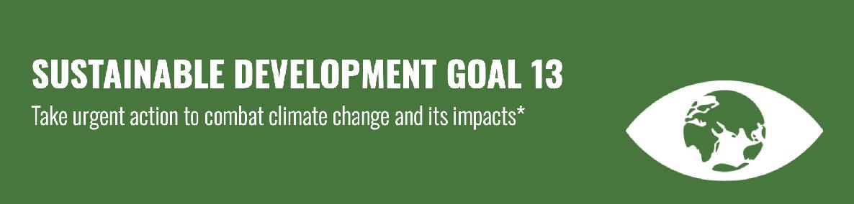 SDG 13 Banner