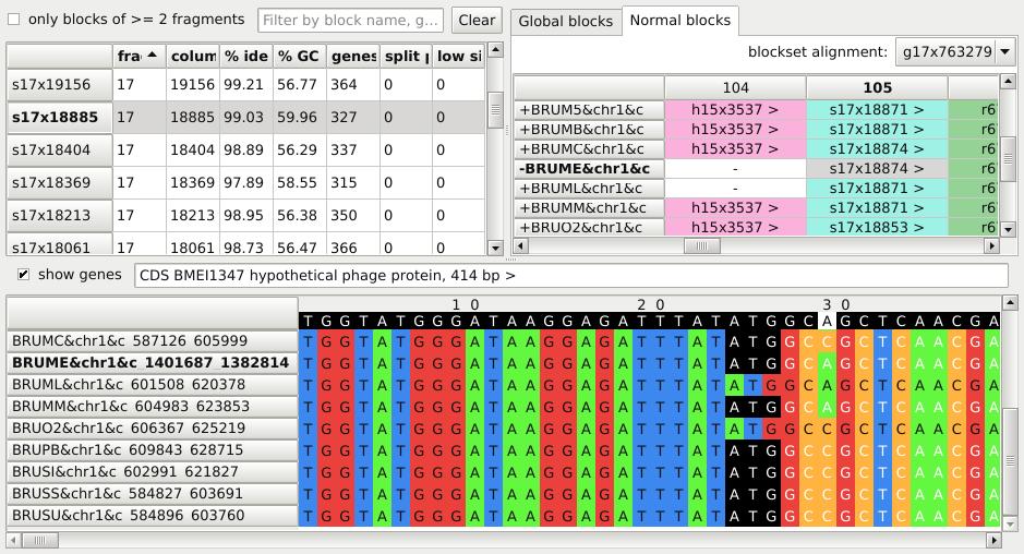 Graphical User Interface of NPG-explorer