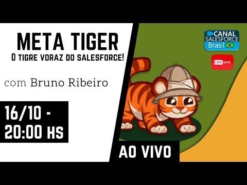 MetaTiger Live Brazil