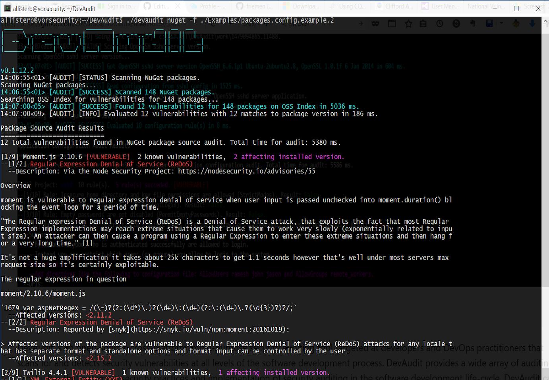 Screenshot of DevAudit package source audit