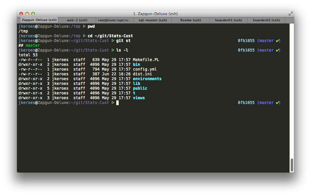 twomuses.zsh-theme screenshot