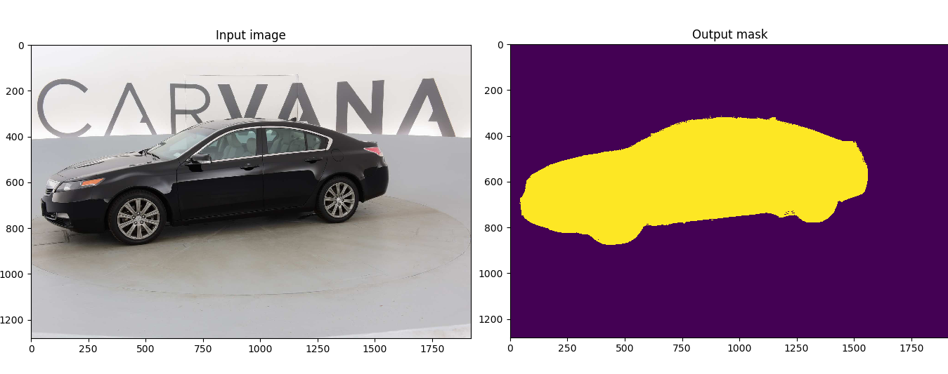 input and output for a random image in the test dataset