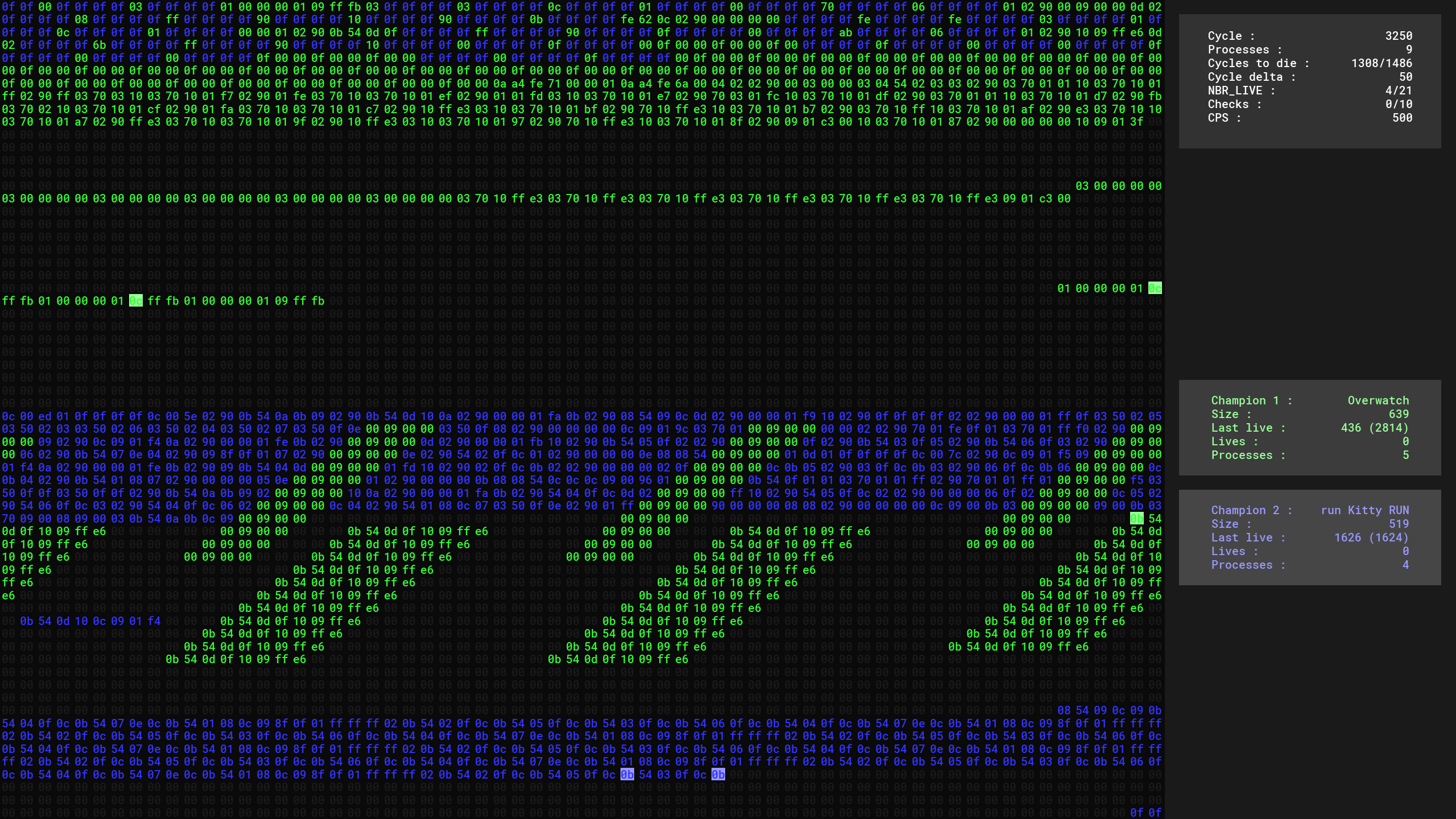 Corewar screenshot