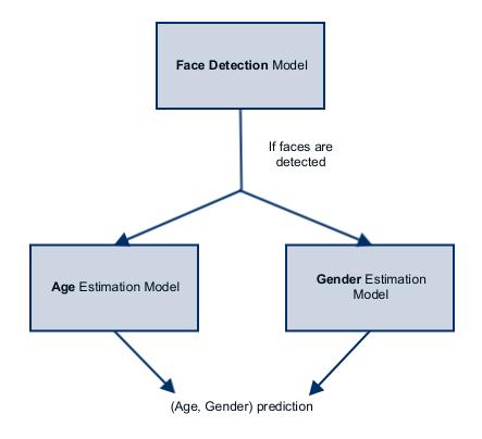 age gender estimation