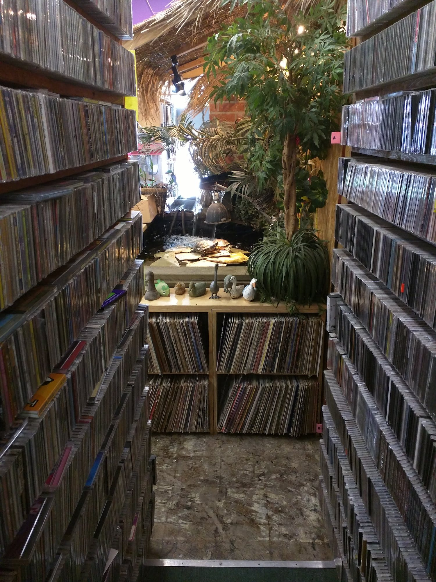 RecordStores/USA md at master · ghostrong/RecordStores · GitHub