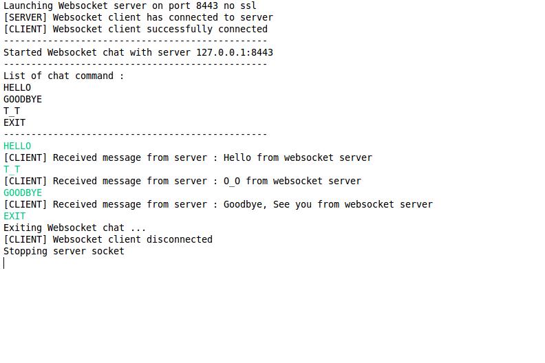 GitHub - bertrandmartel/websocket-java: Websocket Server/Client Java