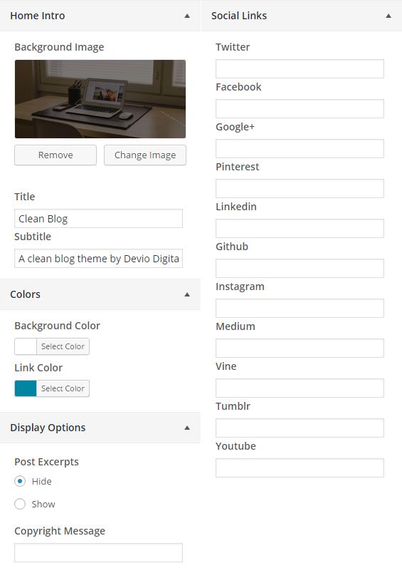Theme Customizer options