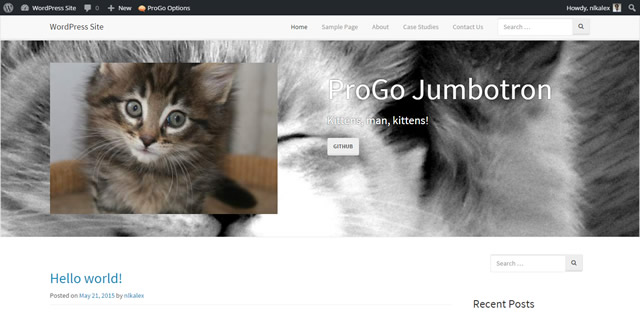 GitHub - progothemes/progo-jumbotron: A WordPress Plugin for