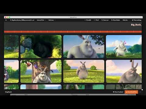 MoviePrint_v004 screencast