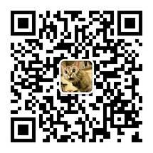 微信ID:a_java_boy3