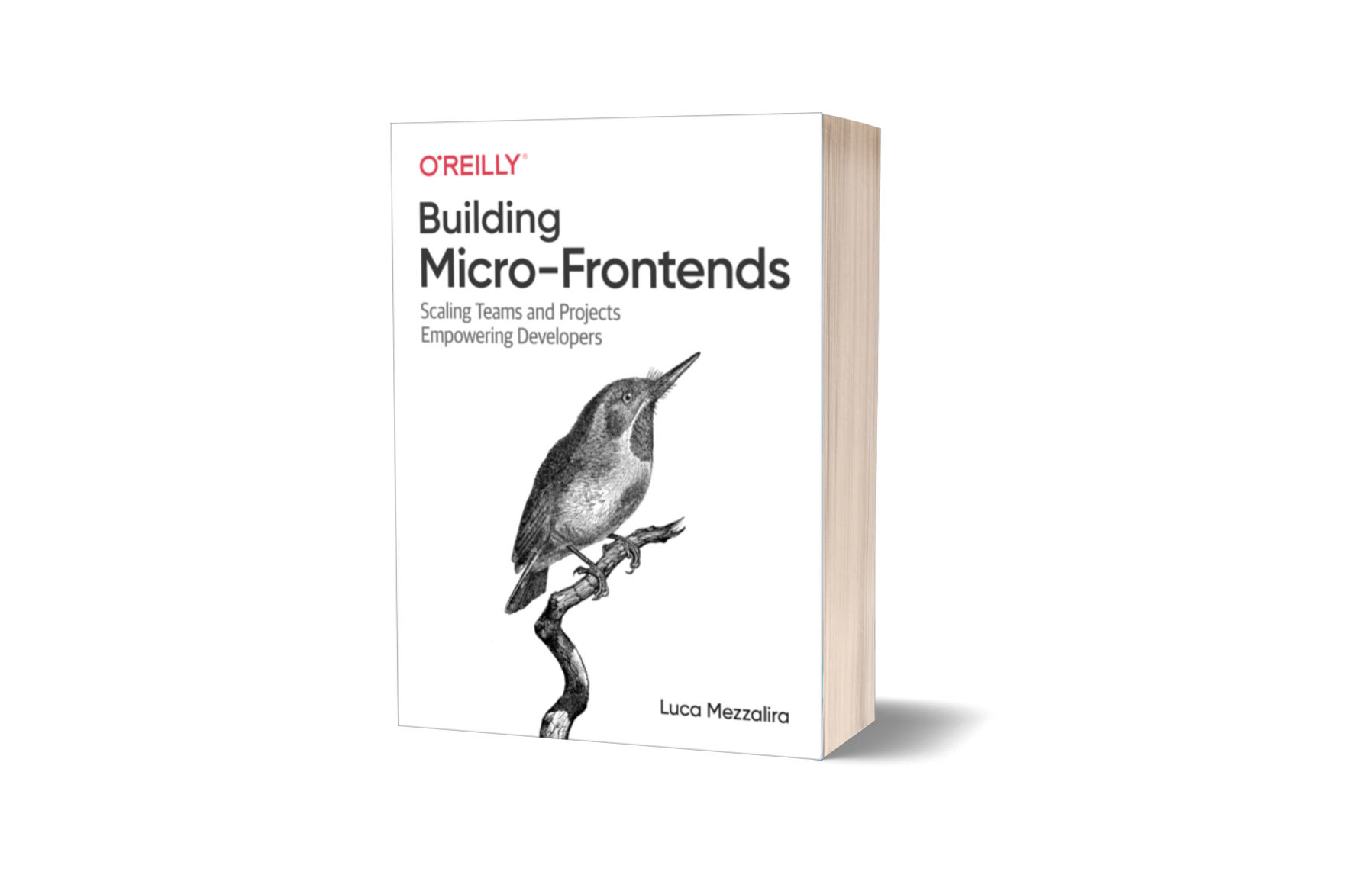 Building Micro-Frontends, the book