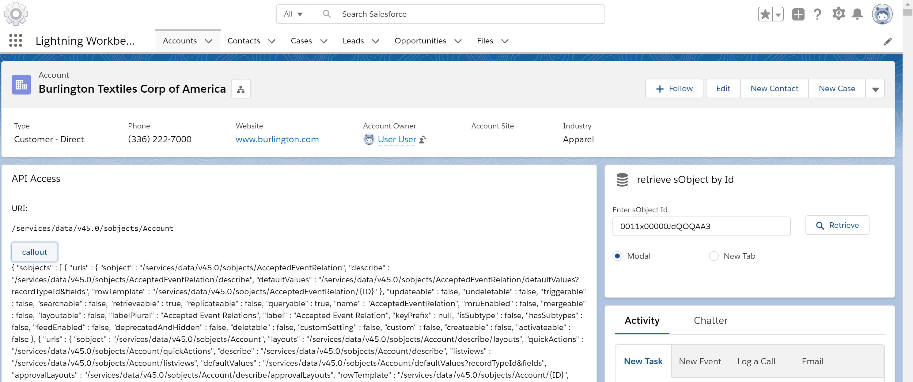 Screenshot API Access / sObject Retrieve