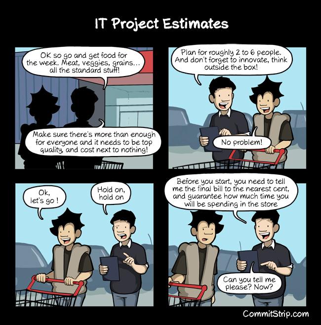 IT Project Estimates