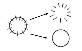 radialitymap logo