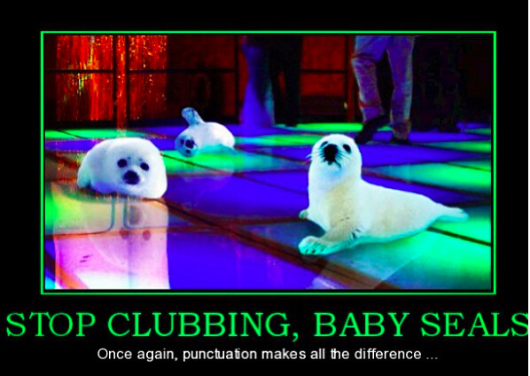 We don't club baby seals