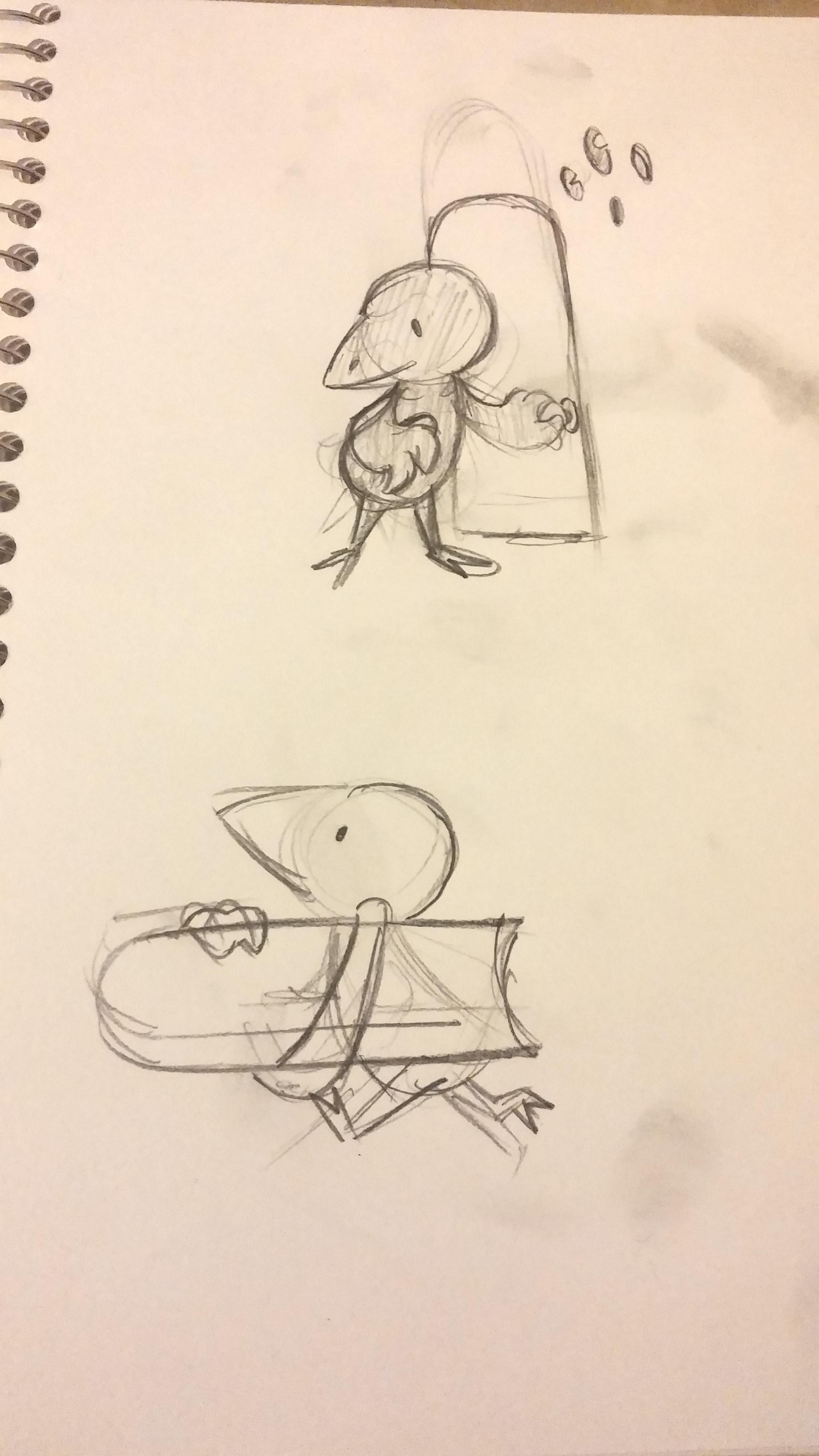 ploverbird