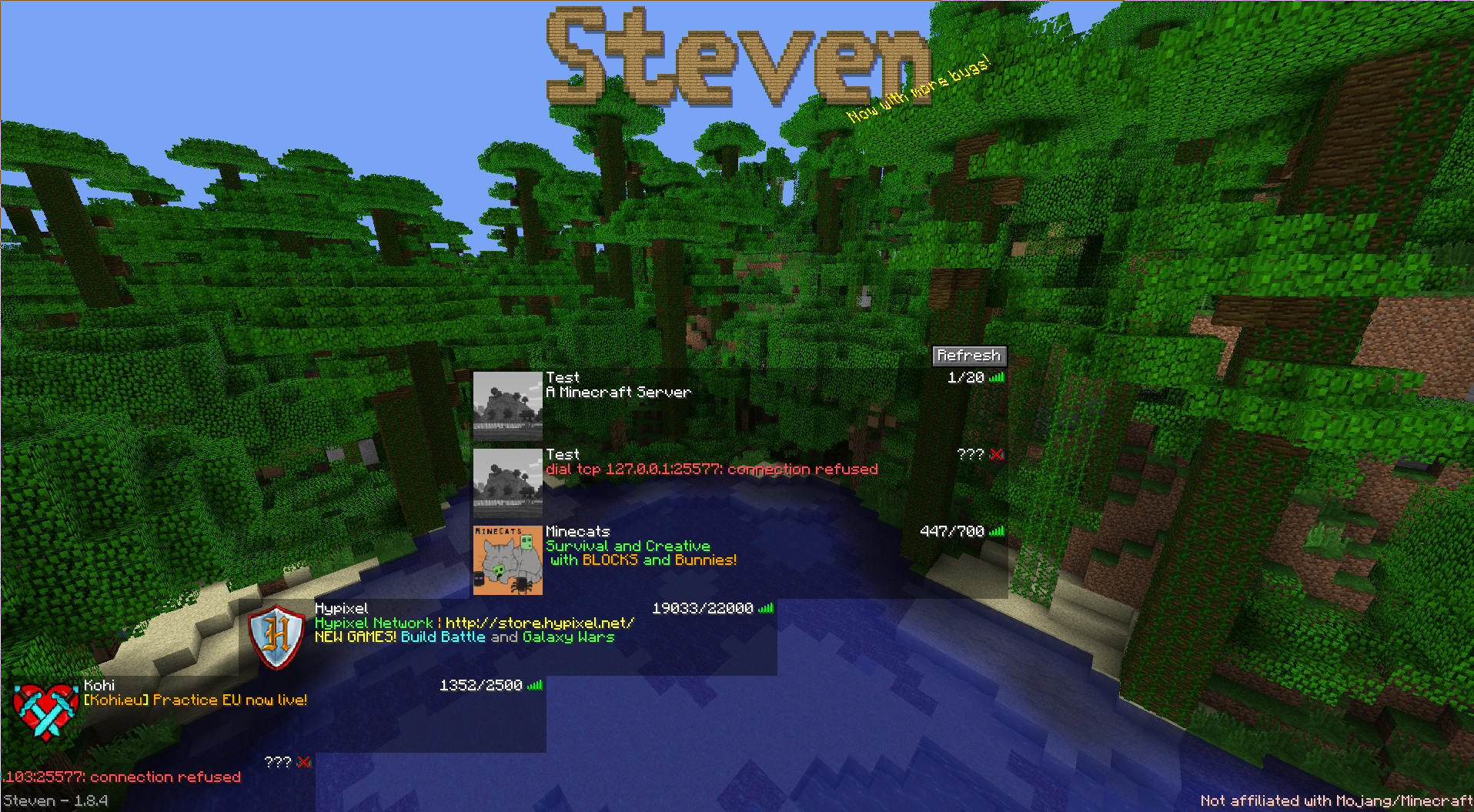 Steven's server list after disconnecting from a server