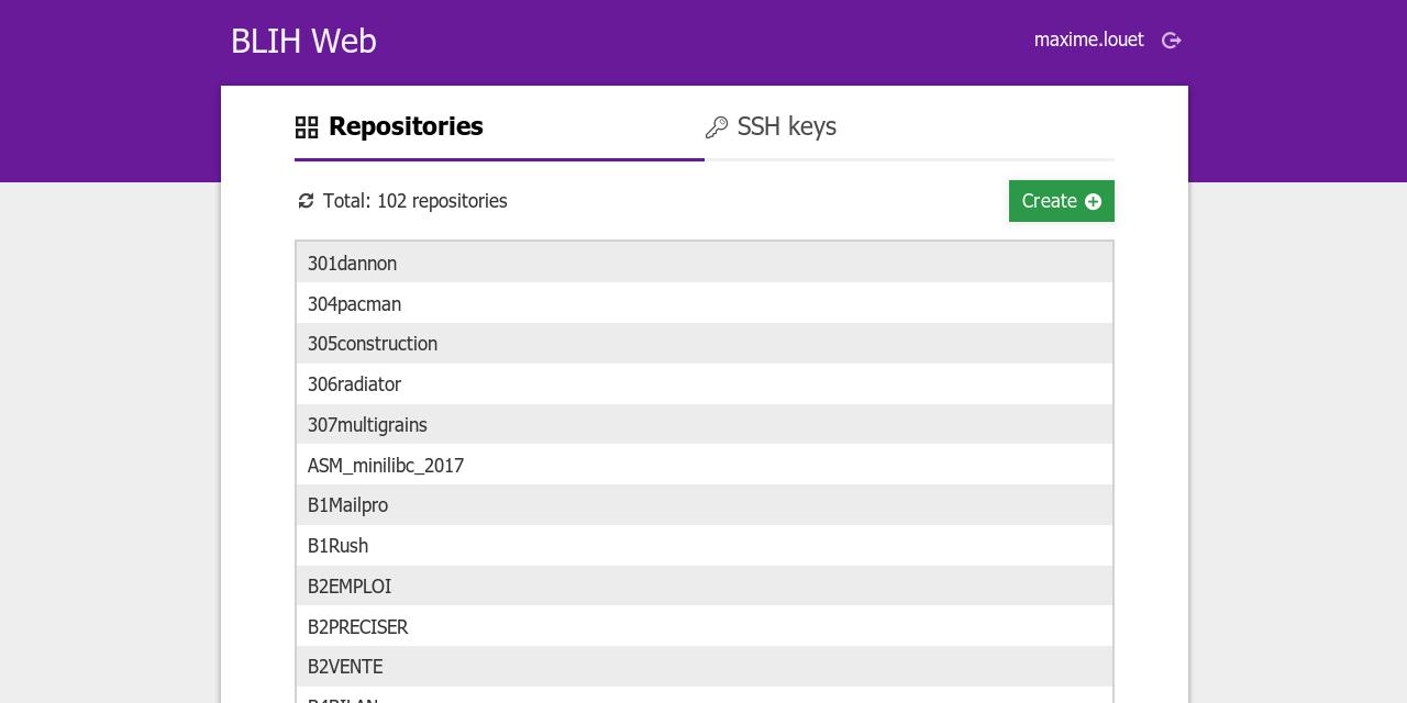 Screenshot of the repository list