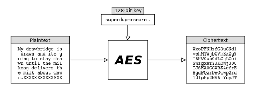 Code-Sleep-Python/Code-Sleep-Python/Encryption-Techniques at master