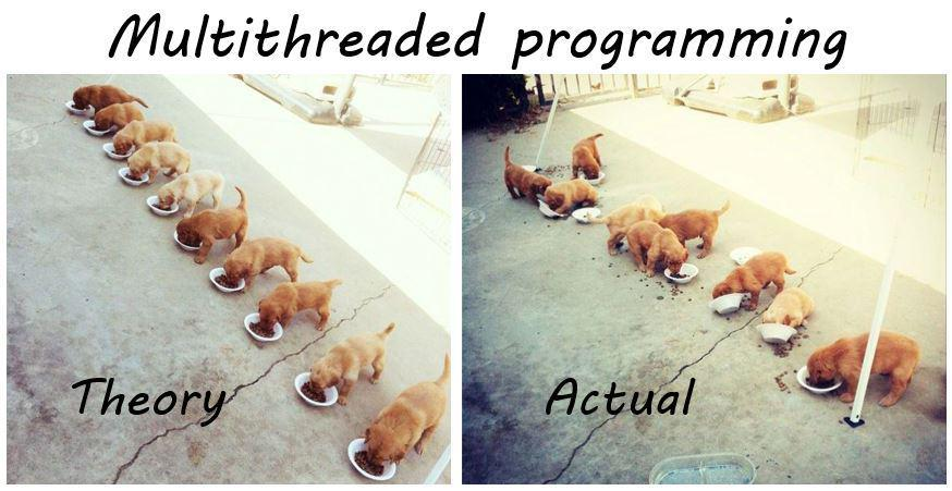 Multithreading Dogs