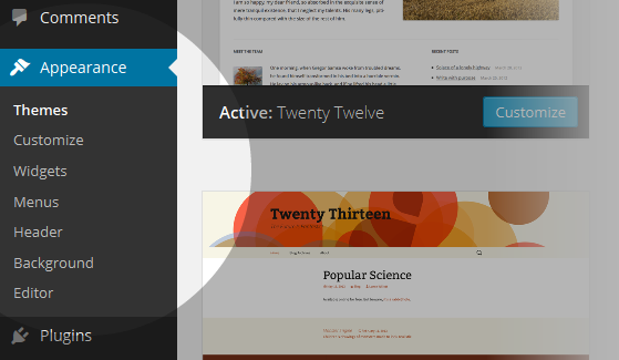 CoursePress - Themes menu