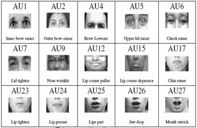 Facial action coding system classes