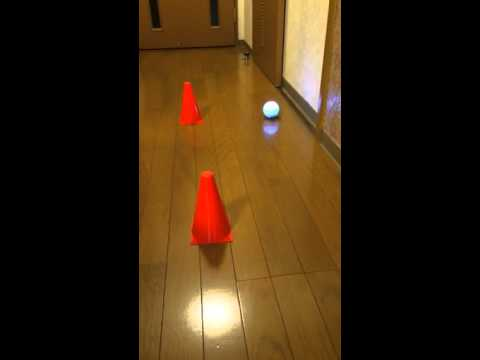 Sphero 2.0 controlled by Scratch(Japanese + English caption)