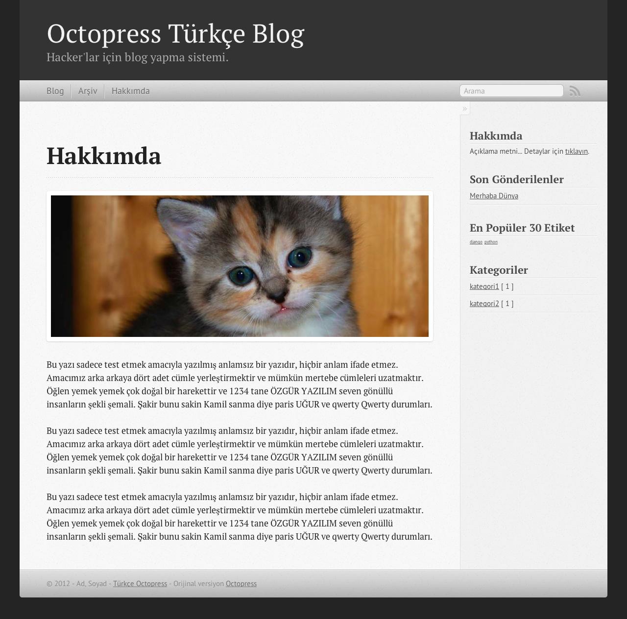 Octopress Türkçe - Sayfa
