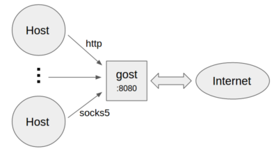 gost/README_en md at master · ginuerzh/gost · GitHub