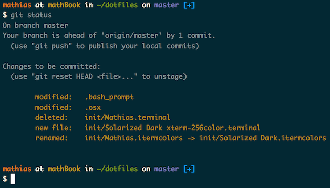 Screenshot of my shell prompt
