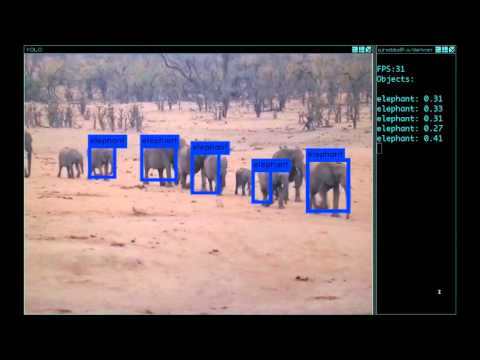 YOLO: Real Time Object Detection · pjreddie/darknet Wiki · GitHub