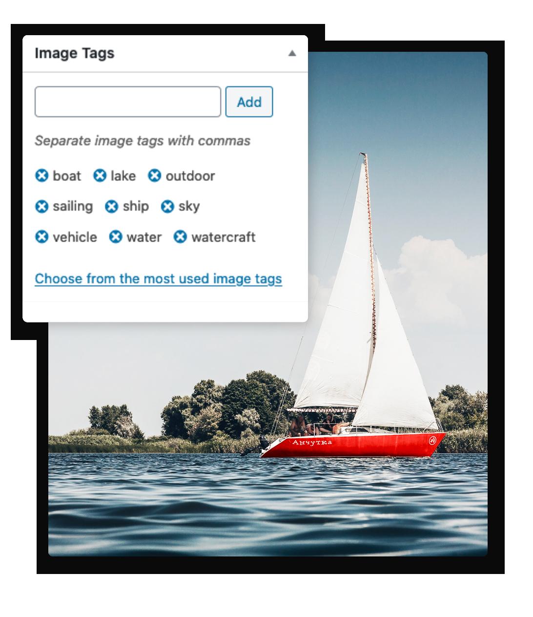 Screenshot of ClassifAI image tagging