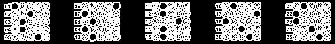 Document Example