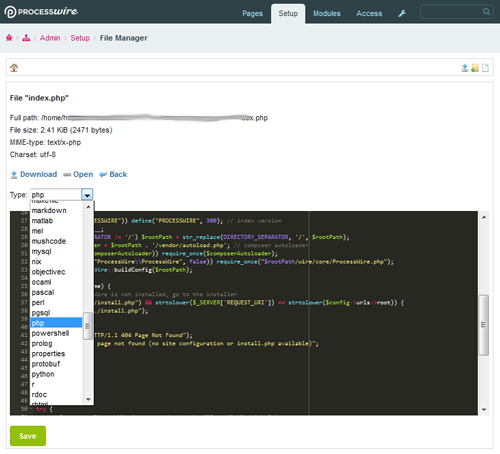 """""""Screenshot showing the code editor"""""""