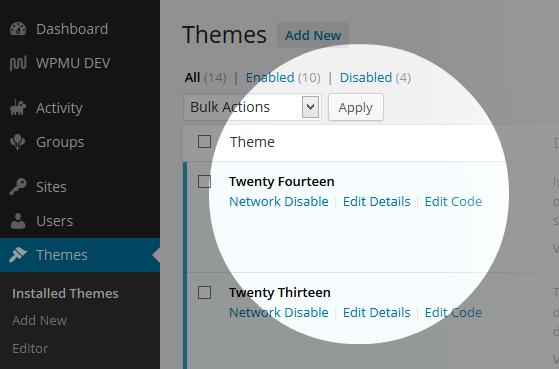 Multisite Theme Manager Edit Details