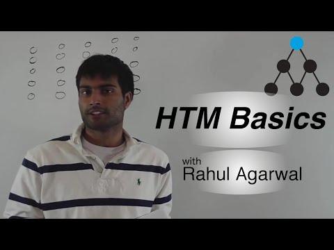 CLA Basics Video