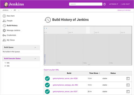 Screenshot jenkins-material-theme history