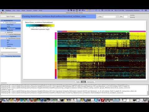 Interactiveresultsviewer Nsalomonisaltanalyze Wiki Github