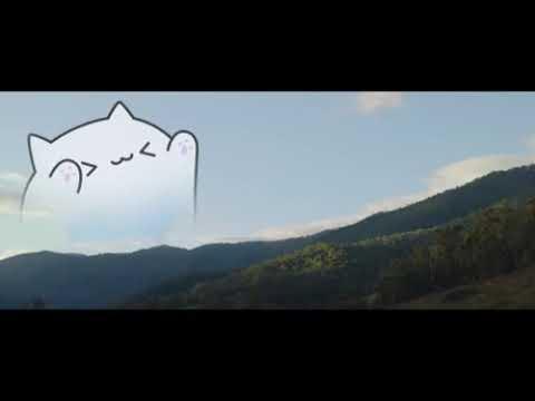 Bongo Cat Memes