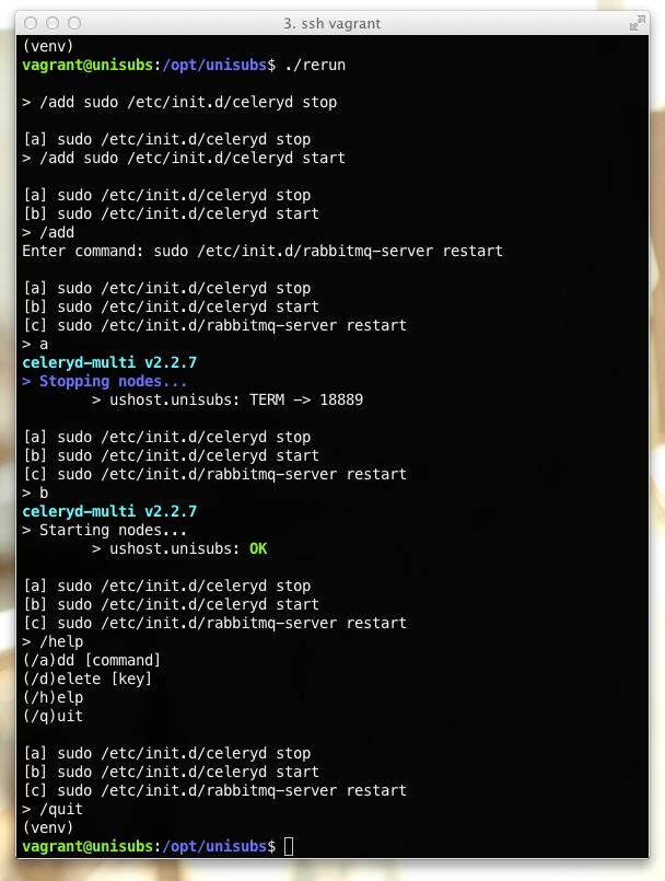 Screenshot of a rerun session