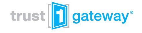 GitHub - Trust1Team/api-gateway: API Engine build on top of Kong API