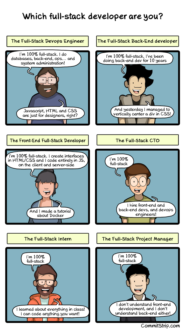 Which full-stack developer are you?