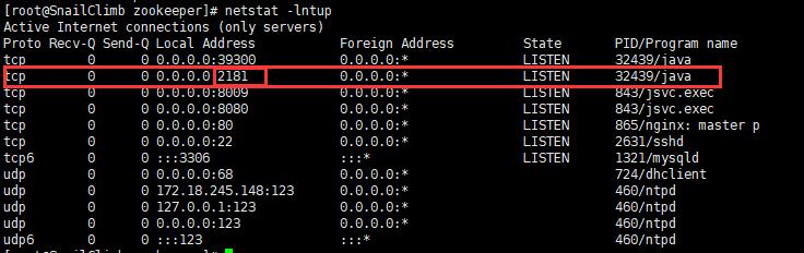 运行 netstat   -lntup命令查看网络状态