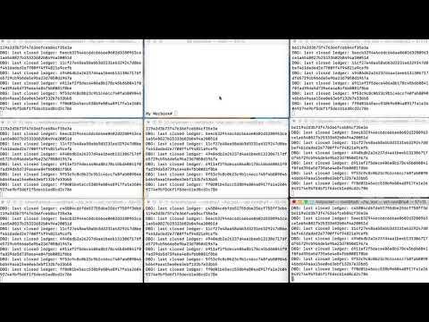 Hot Pocket Consensus Video Demo
