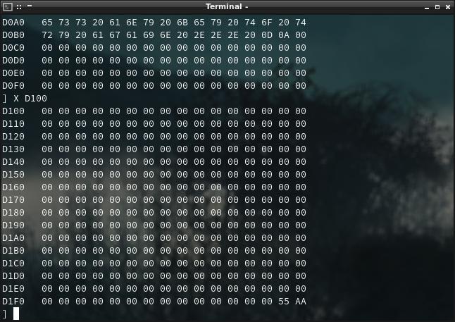 Screenshot of CompactFlash hexdump 2