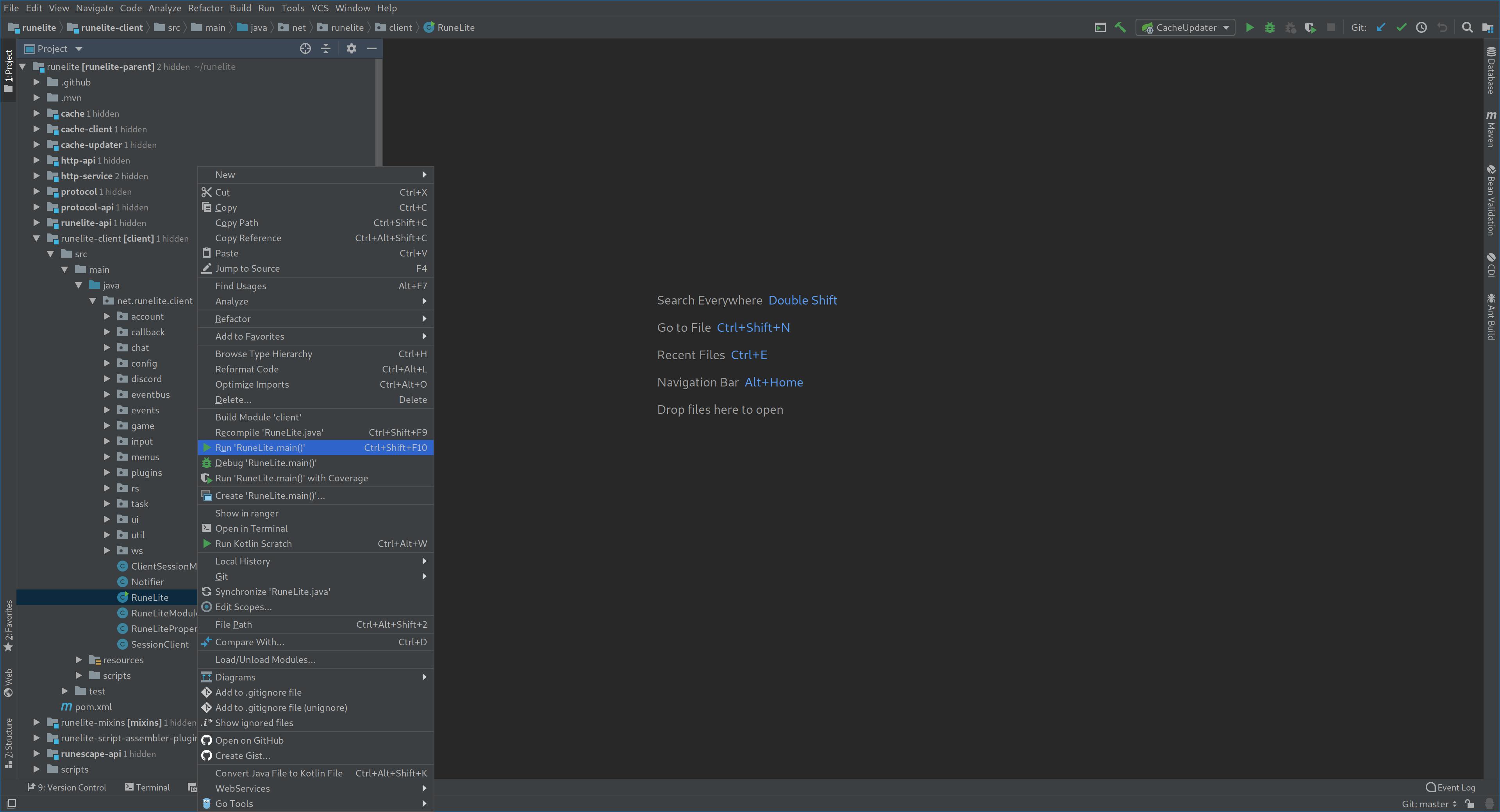 project-view-run-main