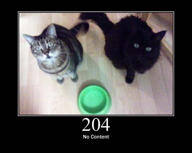 HTTP Cat picture