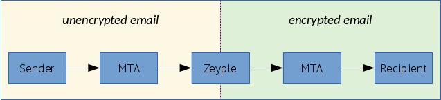 zeyple