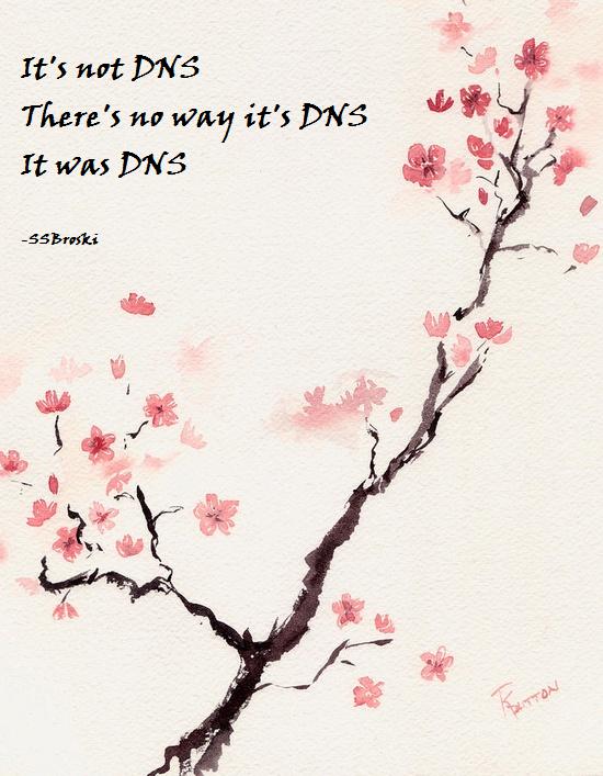 DNS Haiku